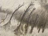 Sand Forest 1 by Jan Traylen, Photography, Digital Giclée printed photograph on natural white textured 315gsm paper