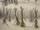 Sand Forest 2 by Jan Traylen, Photography, Digital Giclée printed photograph on natural white textured 315gsm paper