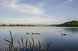 gc21 slapton ley, devon 0800 by Jan Traylen, Photography