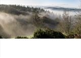 gc28 mist, dunsford, devon. panoramic 2 by Jan Traylen, Photography