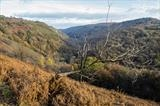 gc47 autumnal teign gorge, hunters path, devon 4995 by Jan Traylen, Photography
